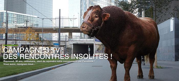 Les agriculteurs doivent rembourser 500 millions à l'Etat. Bruxelles l'exige. Campagnes-tv